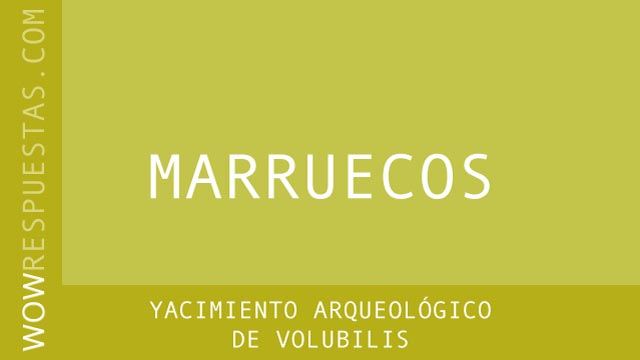 WOW Yacimiento Arqueológico de Volubilis
