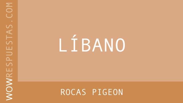 WOW Rocas Pigeon