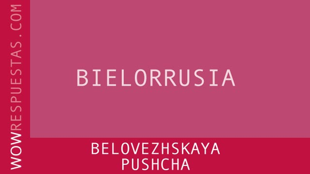 WOW Belovezhskaya Pushcha
